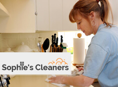 Domestic Cleaners SW19