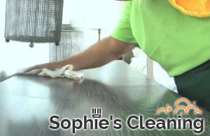 Cleaning Services Wimbledon