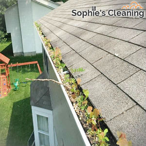 reliable-gutter-cleaning-wimbledon
